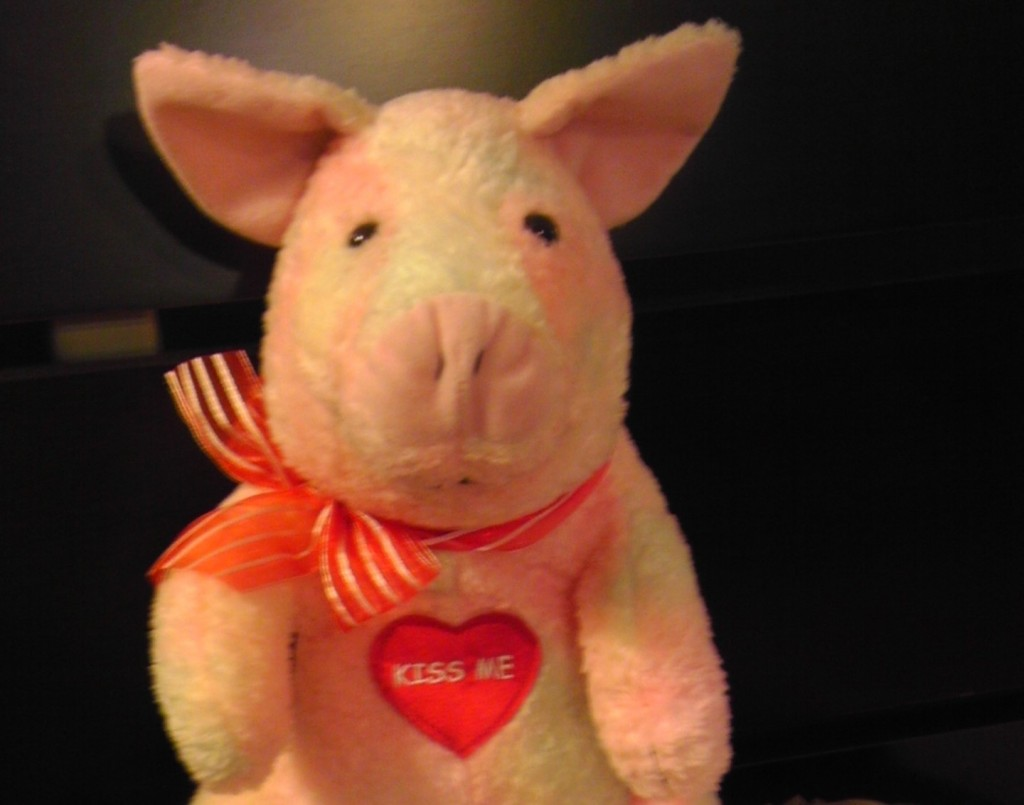Valentines Pig