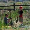 kidsworking